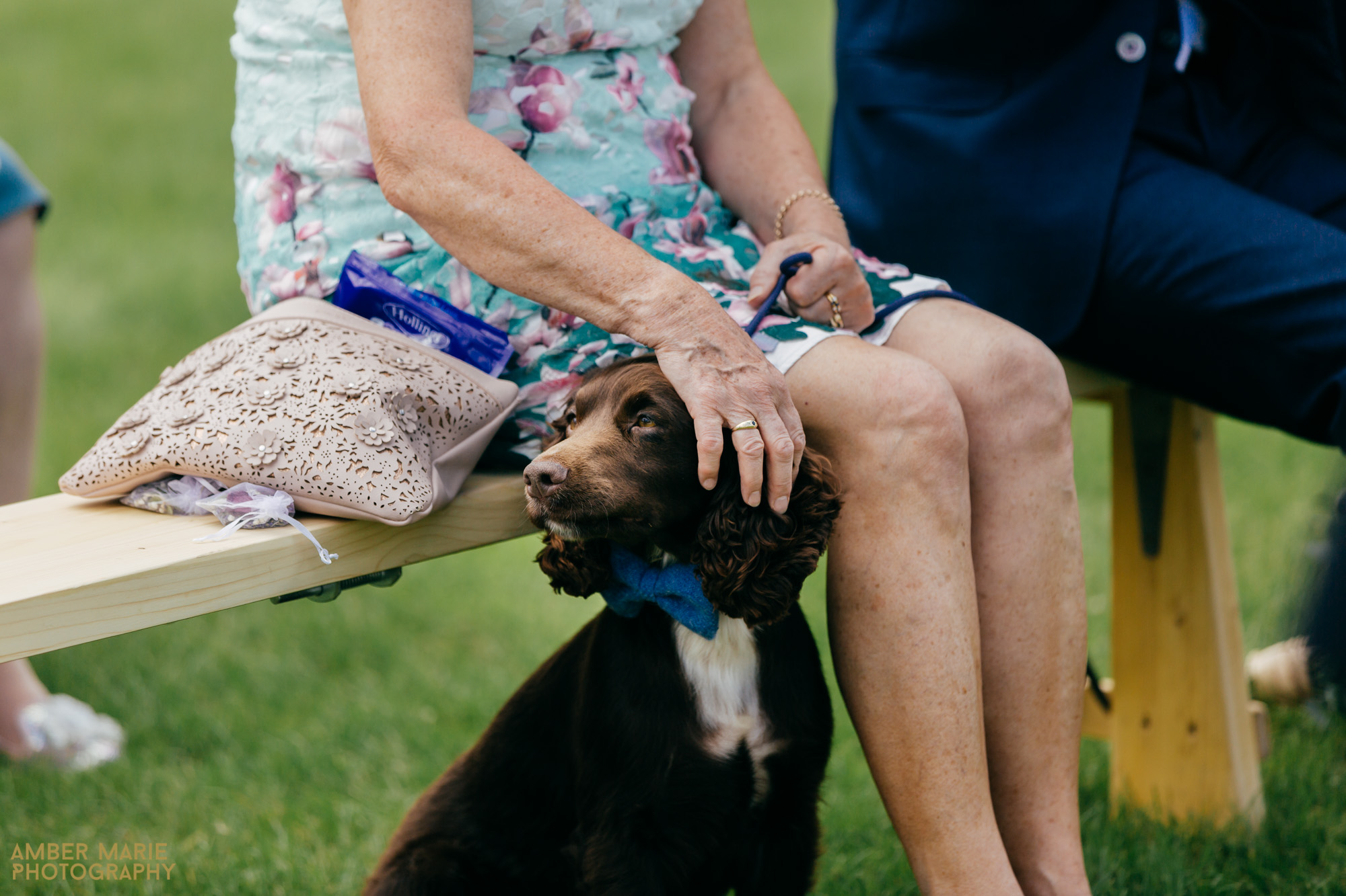 dogs at weddings by cotswold wedding photographer