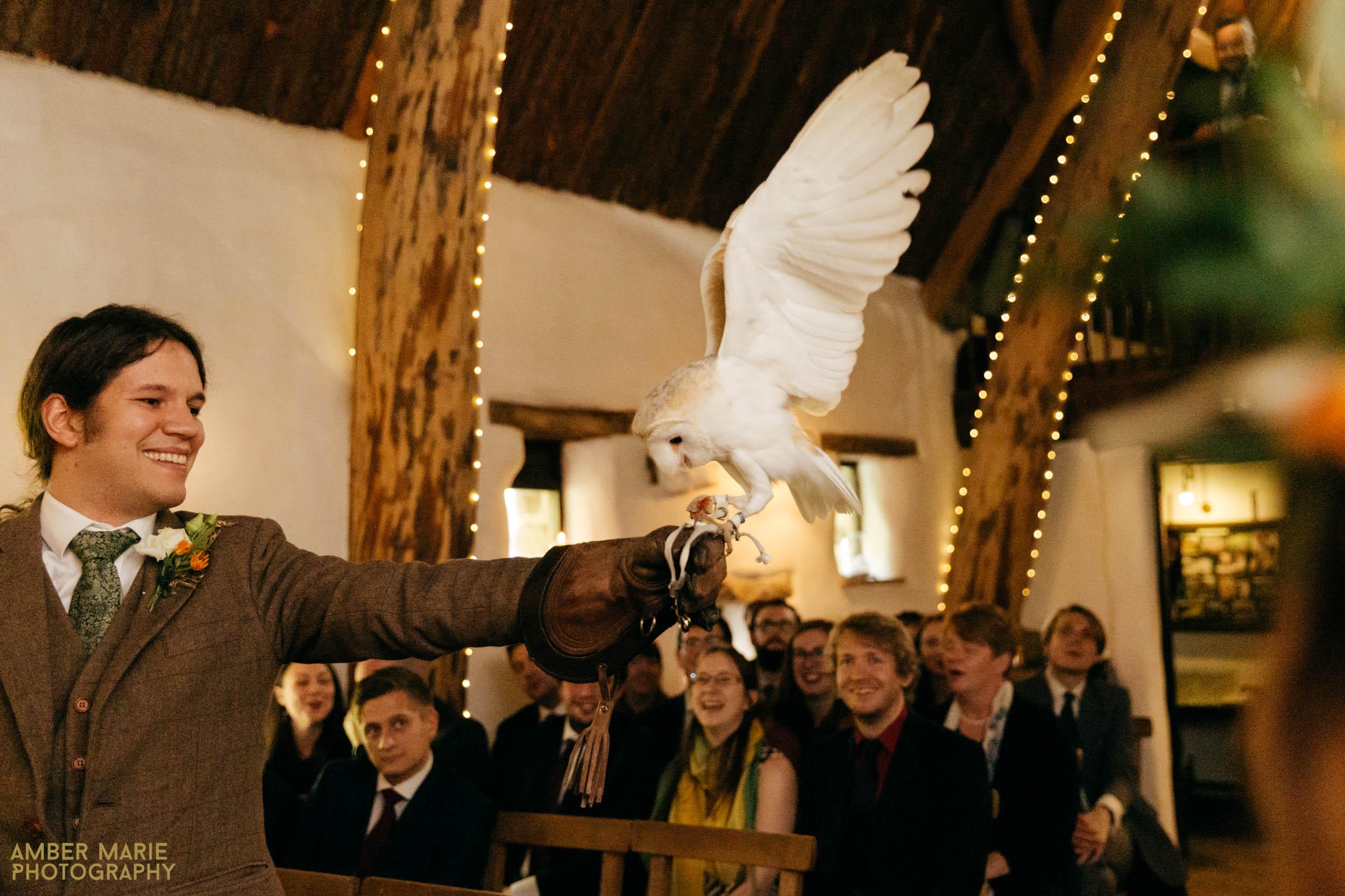 owl ring bearer at stylish halloween wedding